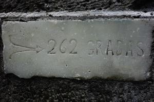 DSC06069